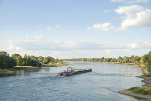 Die Elbe bei Magdeburg