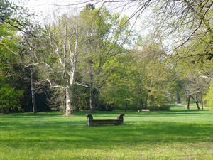 Herrenkrugpark