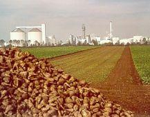 Zuckerfabrik Klein Wanzleben